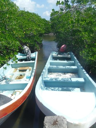 Ecab Explorer: Punta Allen - transportation for our tour of Sian Ka'an