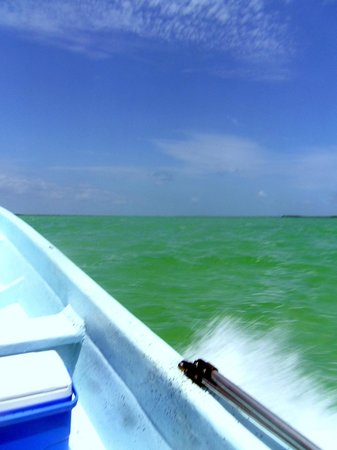 Ecab Explorer : Heading to the green mangrove waters