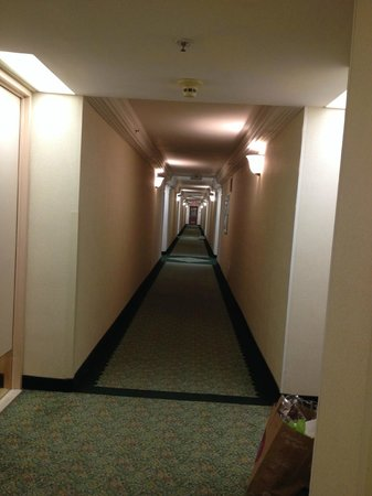 International Plaza Hotel Toronto Airport: I had two long halls to get to my room - request a room close to elevator is avoiding the walk