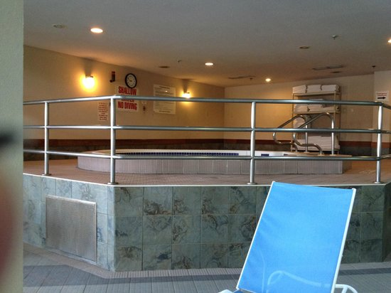 International Plaza Hotel Toronto Airport : Hot tub in the pool area