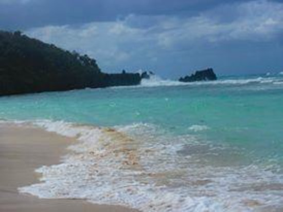 Paradise Beach Hotel: A rough day but this is the best place for snorkeling!