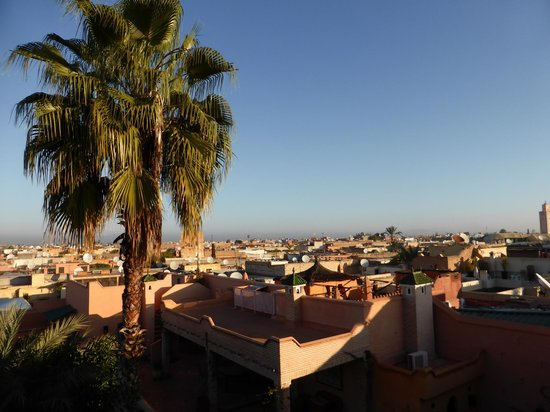 Riad l'Orangeraie : View from the roof terrace