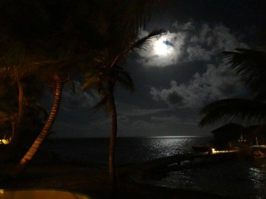 Belizean Shores Resort: View from 12D-Nov.13