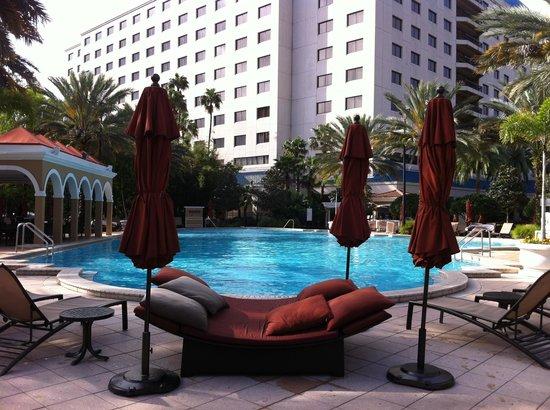 Renaissance Orlando Resort at SeaWorld: I wish we got to swim!