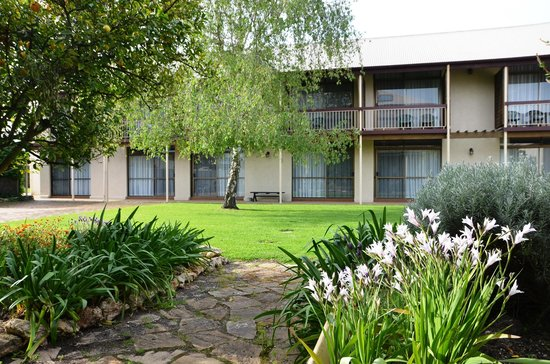 Coonawarra Motor Lodge : View from bushmans Inn