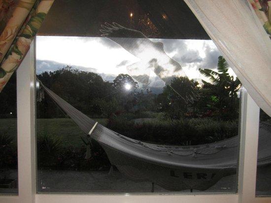Finca Lerida: View from room/cabin 5