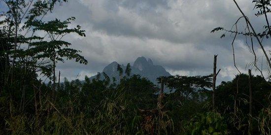 Altos De Campana National Park: View of Cerro Trinidad from the InterAmericana Highway