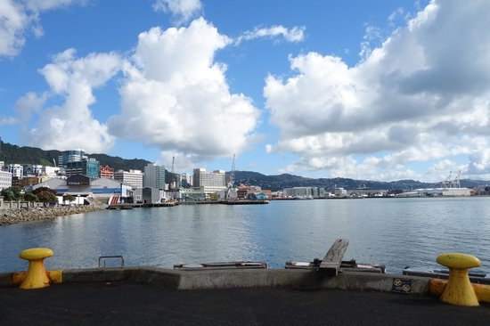 Wellington Waterfront Motorhome Park - TEMPORARILY CLOSED: View from the waterfront along from the Motorhome park
