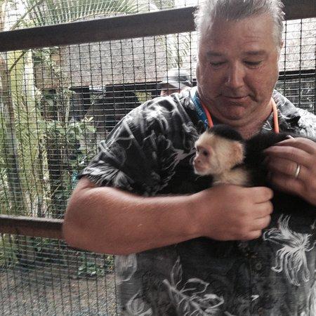 Island Marketing Ltd Roatan Cruise Excursions - Tours : monkey love