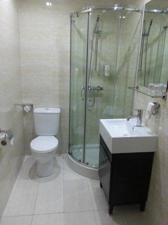 Lorne Hotel: Bathroom Janaury 2014 (Cat)