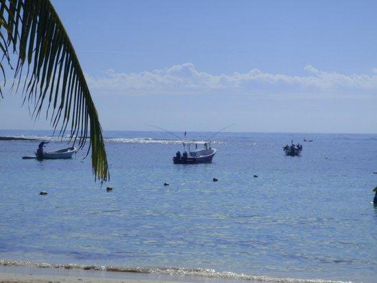 Akumal Beach: Akumal