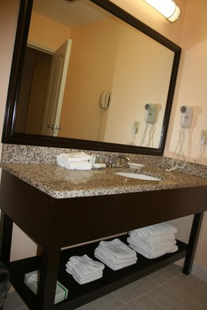 BEST WESTERN PLUS Brunswick Inn & Suites: Bathroom sink area