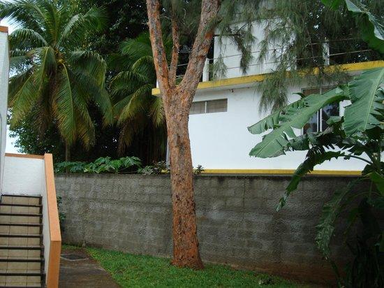 Cocotiers Seaside Boutik Hotel: escalier qui donne sur l'entrée de la chambre