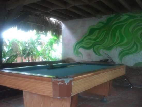Kaya's Place: Pool table