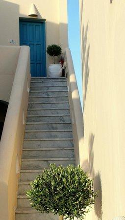 Evgenia Villas & Suites : Hotel area