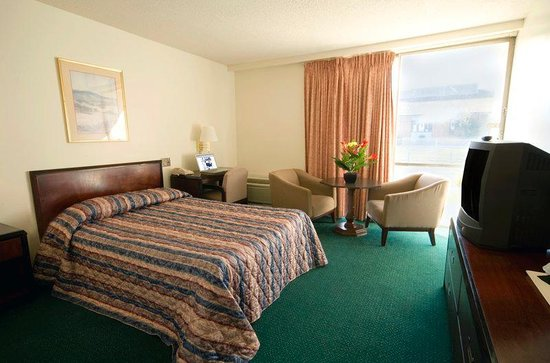 Americas Best Value Inn: Standard One Double
