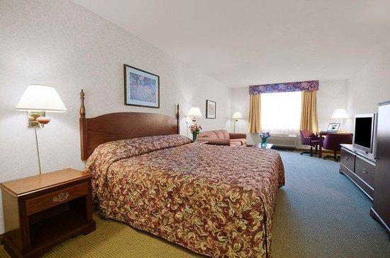 Americas Best Value Sandman Inn: 1 King Mini Suite
