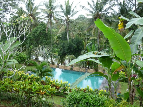 Puri Taman Sari: piscine