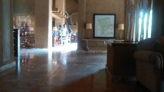 Kapama River Lodge : sala de estar