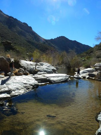Sabino Canyon: walk the rocks and explore