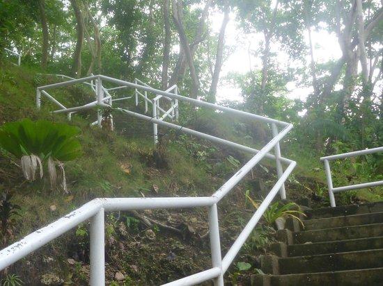 Limasawa Island: Thats the steps