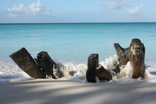 Cocobay Resort: Fryes Beach