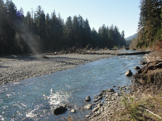 Hoh Rain Forest: Hoh River, along the Hoh River Trail