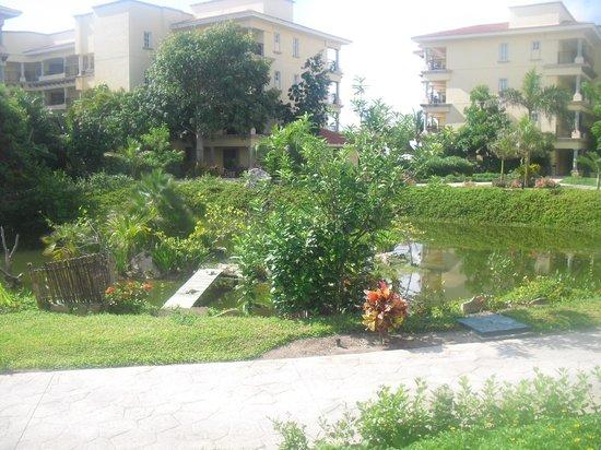 Hotel Marina El Cid Spa & Beach Resort: resort grounds