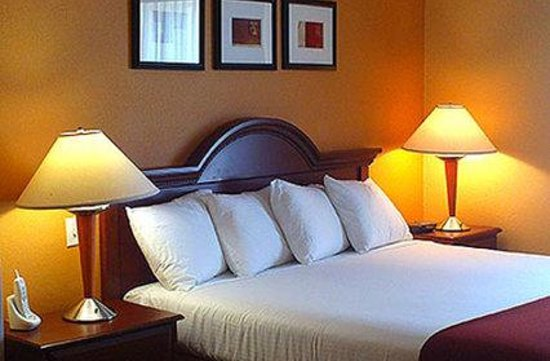 Welcome Hotel and Suites: Single Room