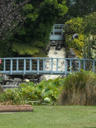 Ngatea Water Gardens : waterfall to lily ponds