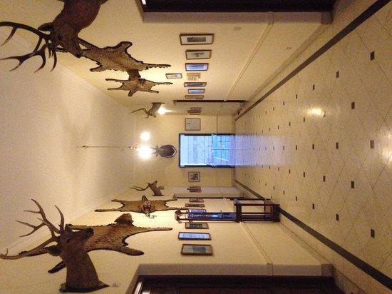 Lallgarh Palace: One of the hallways