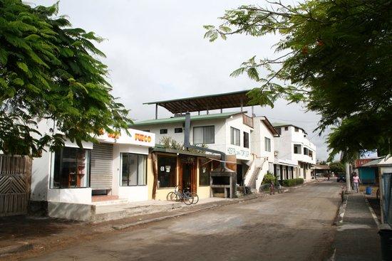 La Gran Tortuga: Hotel y alrededores