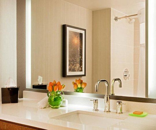 Hyatt Regency Princeton : PRINC_P007 Guest Bathroom