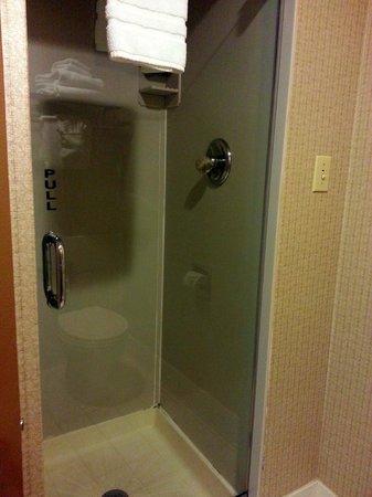 Chicago's Essex Inn: Shower