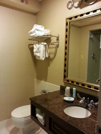 Chicago's Essex Inn: Bathroom