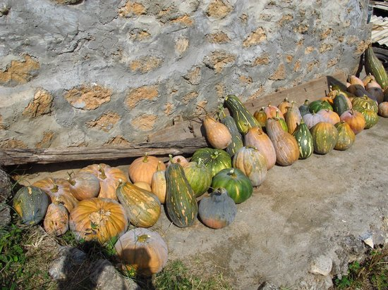 The Bruce Chalet: Hongmen village