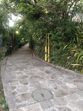 Shrikinjocho Stone-Path Road: 首里城間近辺り