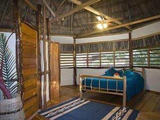 Cotton Tree Lodge : Room