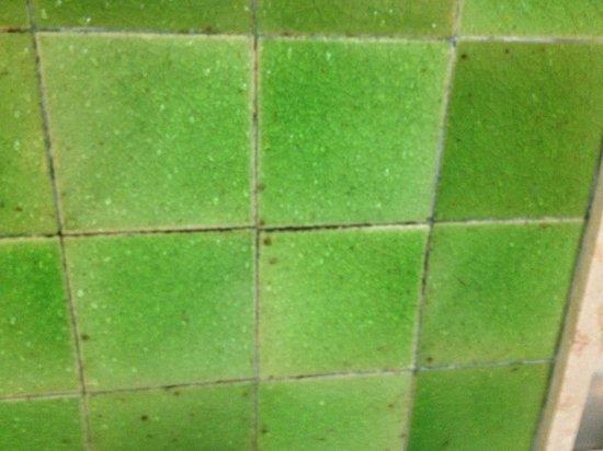 Hyderabad Marriott Hotel & Convention Centre: Mold? Black stuff in tile cracks