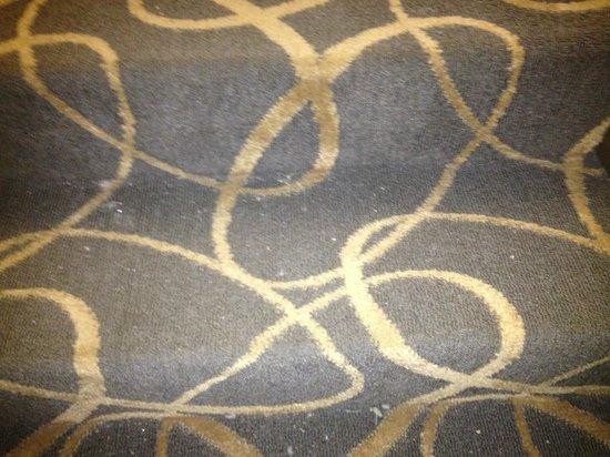 Days Inn & Suites Stevens Point: Carpet in common area needed vacuuming