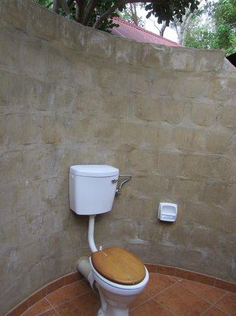 The Old Bridge Backpackers: Clean, open air bathroom in ensuite