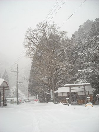 Hotel Nosegawa: 冬の野迫川村