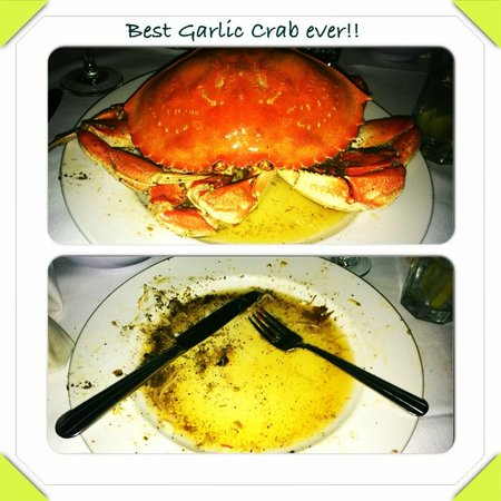 Crustacean: Before & After
