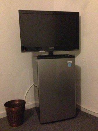Hotel Pierre: Fridge/TV stand