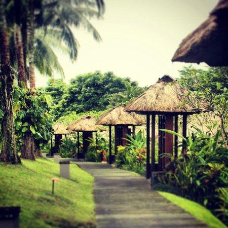Maya Ubud Resort & Spa: Take a walk.