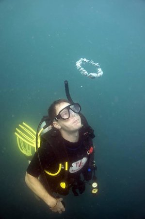 The Dive Inn : Bubble rings