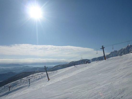 Hakuba 47 Winter Sports Park : View heading to the top