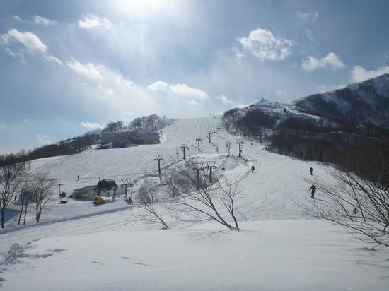 Hakuba 47 Winter Sports Park : View toward the top of the mountain