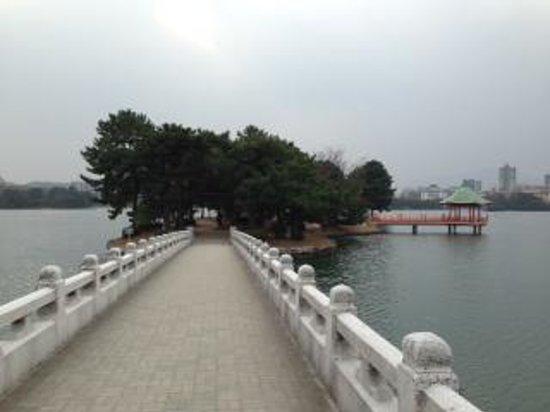 Ohori Park: 橋