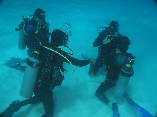 Playa Diving Center: Curso OWD